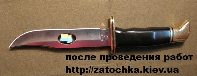 BUCK UA 2